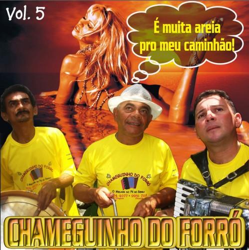 cd-chameguinho-do-forra_5-capa1