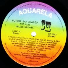 halcio-brenha_forra-do-chapau-virado_a