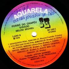 halcio-brenha_forra-do-chapau-virado_b