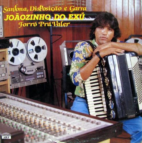 joaozinho-do-exu-1989-sanfona-disposiaao-e-garra-forra-pra-valer-capa