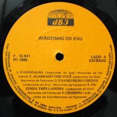 joaozinho-do-exu-1989-sanfona-disposiaao-e-garra-forra-pra-valer-selo-a