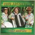 """Colaboração da Gorete """"O Trio Arcoverde surgiu em 1967, quando três irmãos resolveram se unir para participar do 'Primeiro Festival de Forrozeiros Mirim' em Pernambuco. Apesar de jovens e inexperientes, […]"""