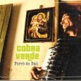 """Colaboração do Érico Sátiro, de João Pessoa – PB. """"Soenildo Santos, sergipano de São Domingos, nascido em 1978, herdou o apelido Cobra Verde de seu pai, o também forrozeiro Gileno […]"""
