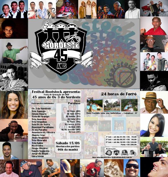 Festival Rootstock 2015 - cartaz fotos